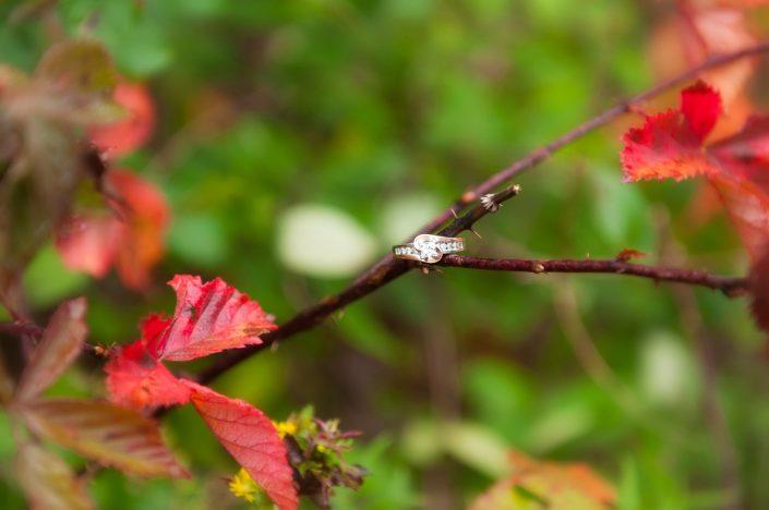 Eden Troxell Photography - Allentown, lehigh valley